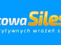 https://www.sportowasilesia.pl/